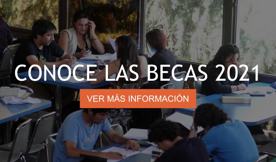 postgrados universidad de santiago de chile